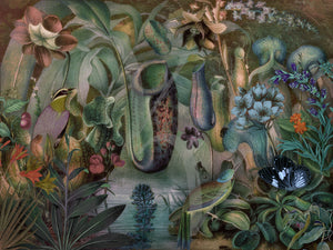 Garden of Venus. Whimsical nature collage. Fine art print