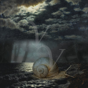 Escargot. Surreal sea snail by moonlight collage. Fine art print