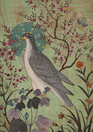 Falcon and Flowers. Exotic bird collage. Fine art print