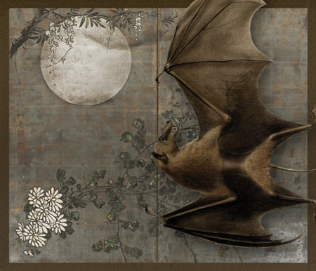 When the Night Falls. Bat with Full Moon and Blossoms collage. Flying Fox. Fine art print