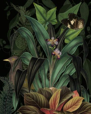 Velvet Bower. Lush rain forest plants with bird collage. Fine art print