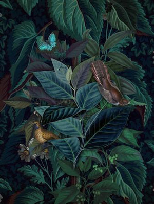 Evergreen dark botanical lush exotic plants with birds original collage.  Fine art print