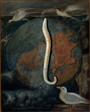 Parasitical Worm of the Seagull. Antique scientific fine art print