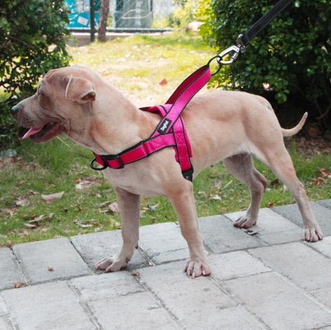 Dog Harness Easy On and Off Adjustable Vest - trendymal.com