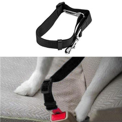 Collar Harness Lead Dog Collar Car Safety Seat Belt - trendymal.com