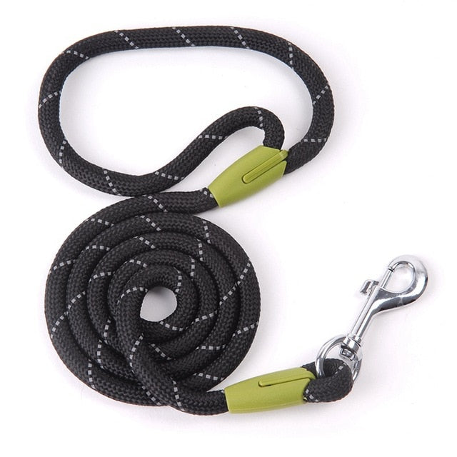 Dog Leash For Small Dogs - trendymal.com