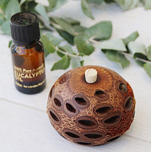 Load image into Gallery viewer, Banksia Essential Oil Aroma Pod - Medium