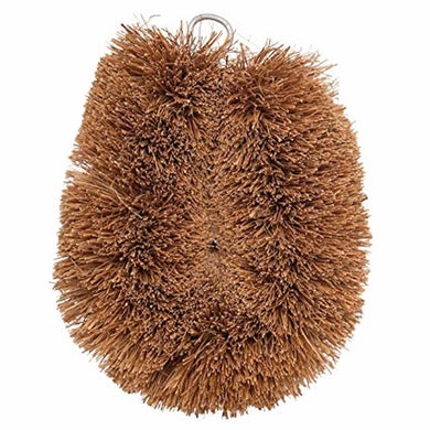 Coconut Hand Held Dish Scrubber-kitchen-MintEcoShop