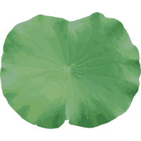 Lotus Leaf