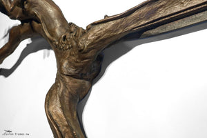 Fusion Frame Sculpture by Darryl Cox Jr - SIREN 8