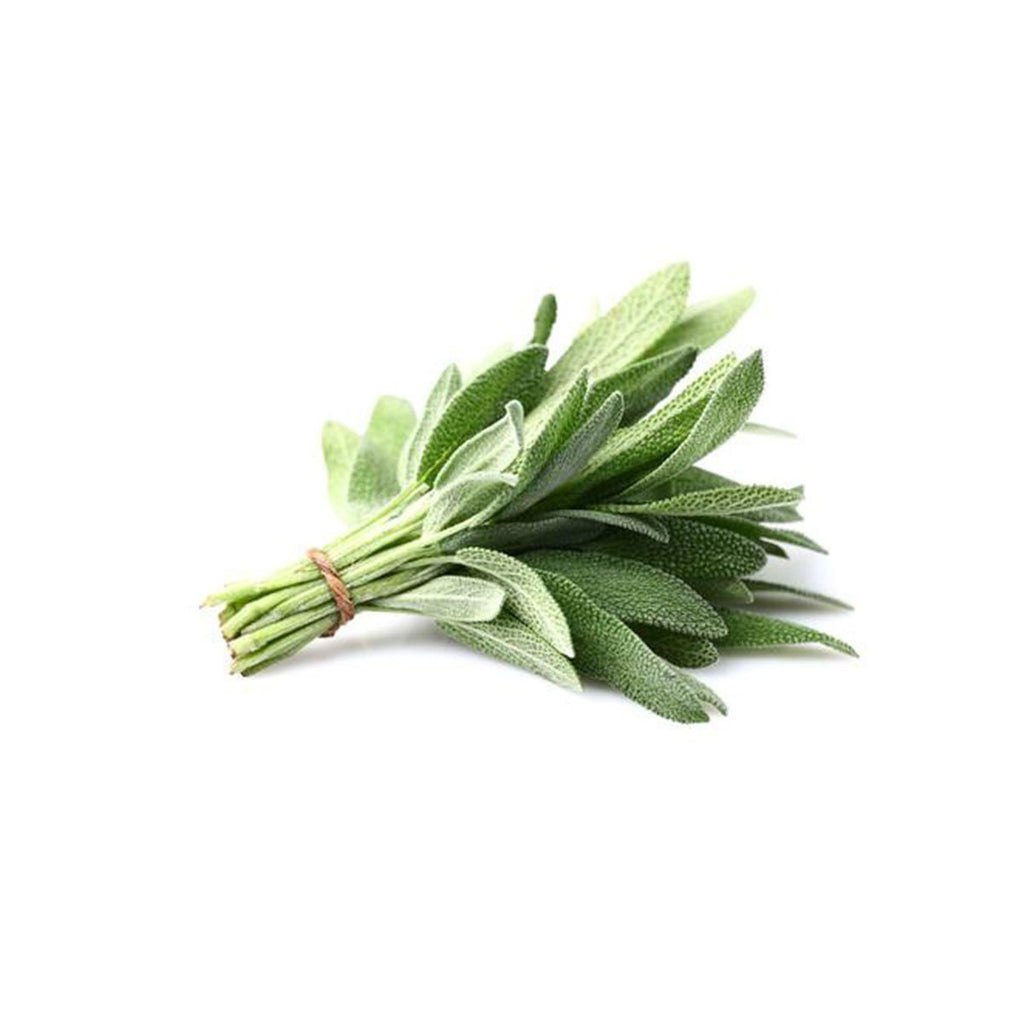 Herbs - Sage (Bunch)
