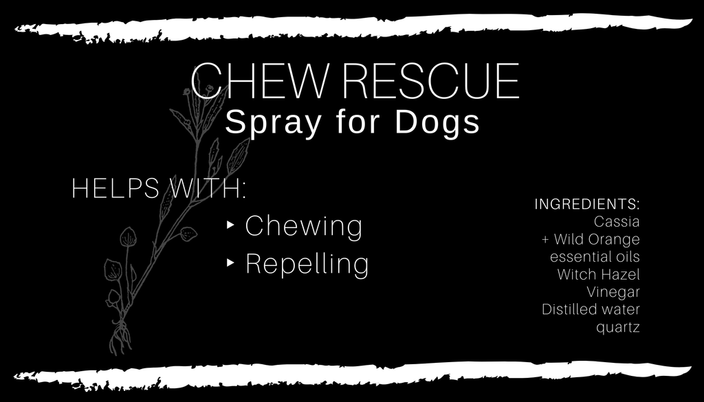 CHEW RESCUE Dog Spray