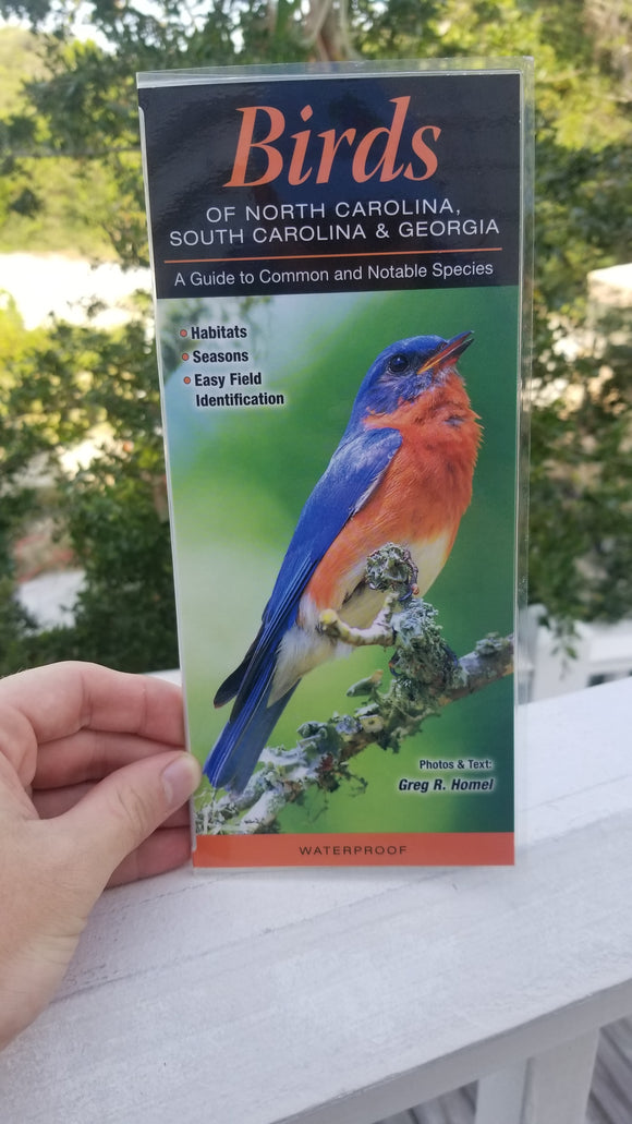 Birds of North Carolina Guide