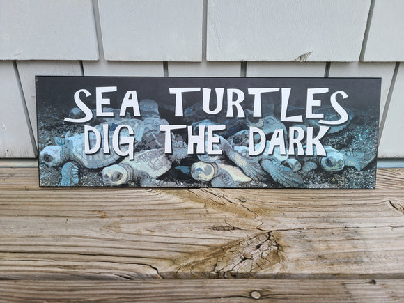 Sea Turtles Dig the Dark Sign