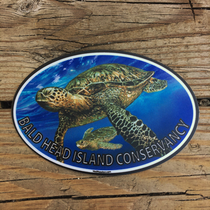BHIC Sea Turtle Sticker