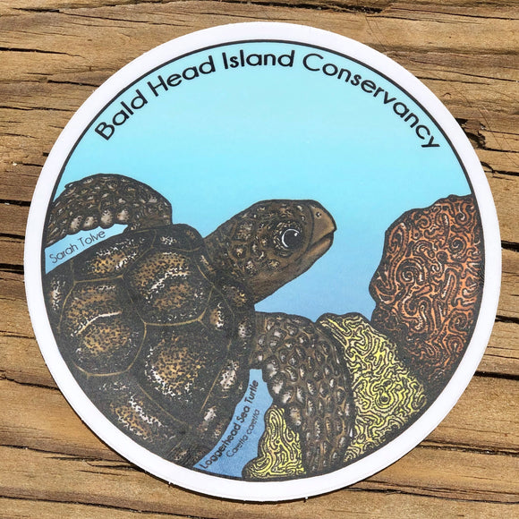 Loggerhead Sticker