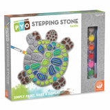 Paint your own Turtle Stone