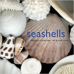 Seashells Photo Book