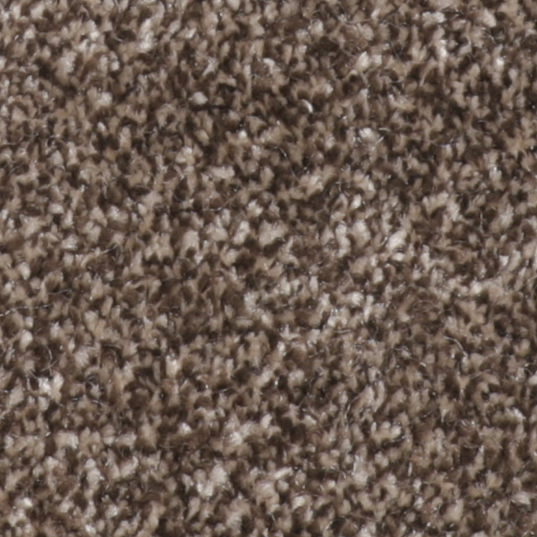 Tranquility Carpet Chocolate Fondue - Direct Flooring & Beds