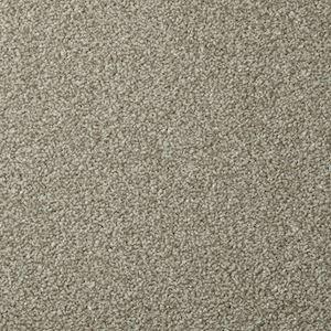 Apollo Plus Manhattan Taupe - Direct Flooring & Beds