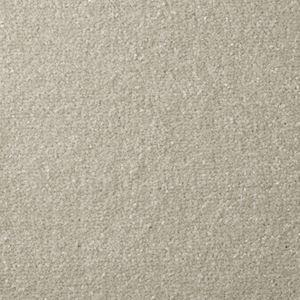 Apollo Plus Tempting Taupe - Direct Flooring & Beds