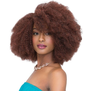 Janet Collection 2X Afro Kinky Bulk 14""