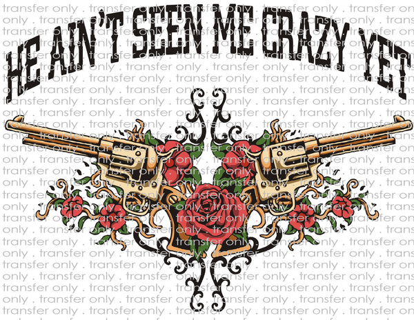 He Ain't Seen Me Crazy Yet - Waterslide, Sublimation Transfers