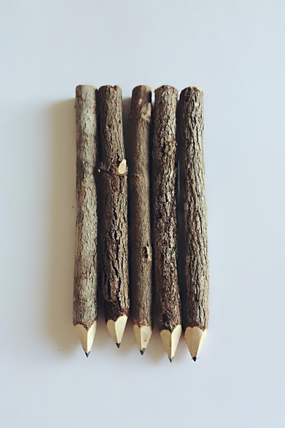 AUBERGINE FOX - NATURAL PENCILS - Design Accessories - Ozon Boutique