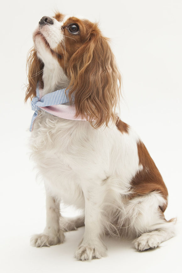 OHHH MY DOG - PET BANDANA - PINK CLOUDS - Pet Accessories - Ozon Boutique - 1