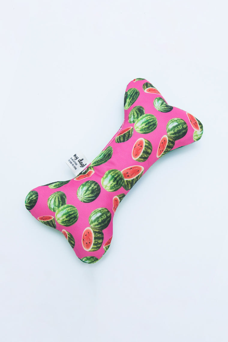 STUFFED BONE TOY - ONE IN A MELON