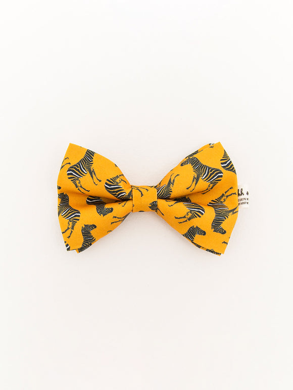 PET BOWTIES - ZEBRA - ORANGE