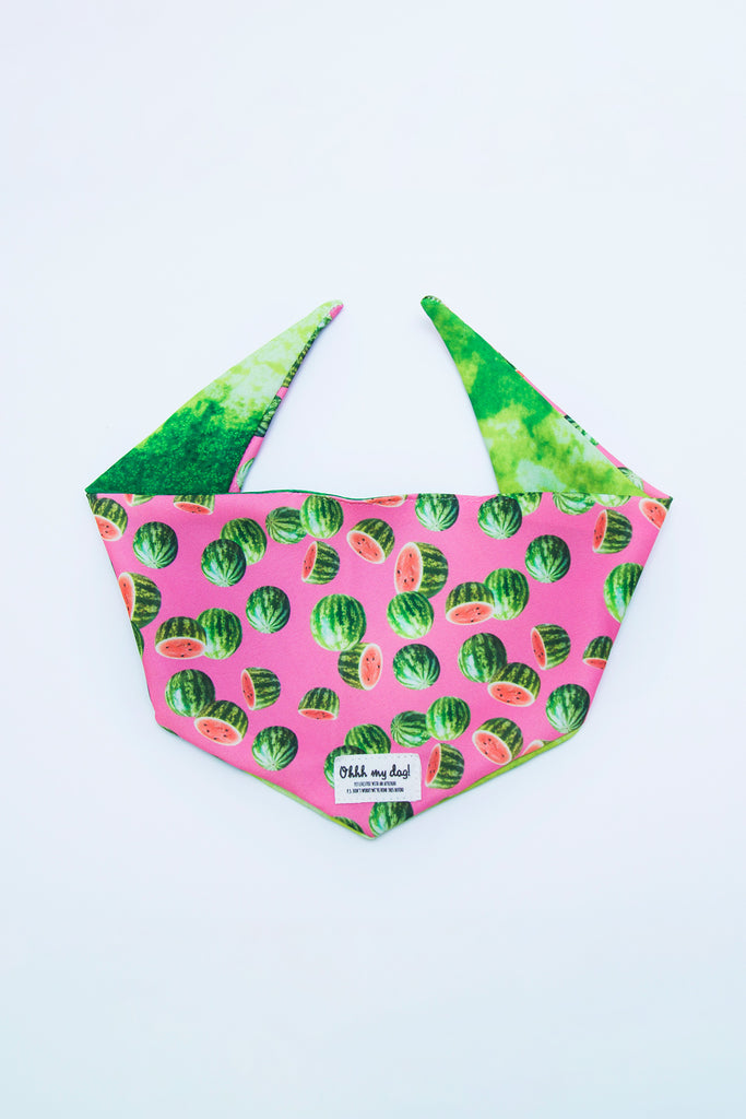 PET BANDANA - ONE IN A MELON