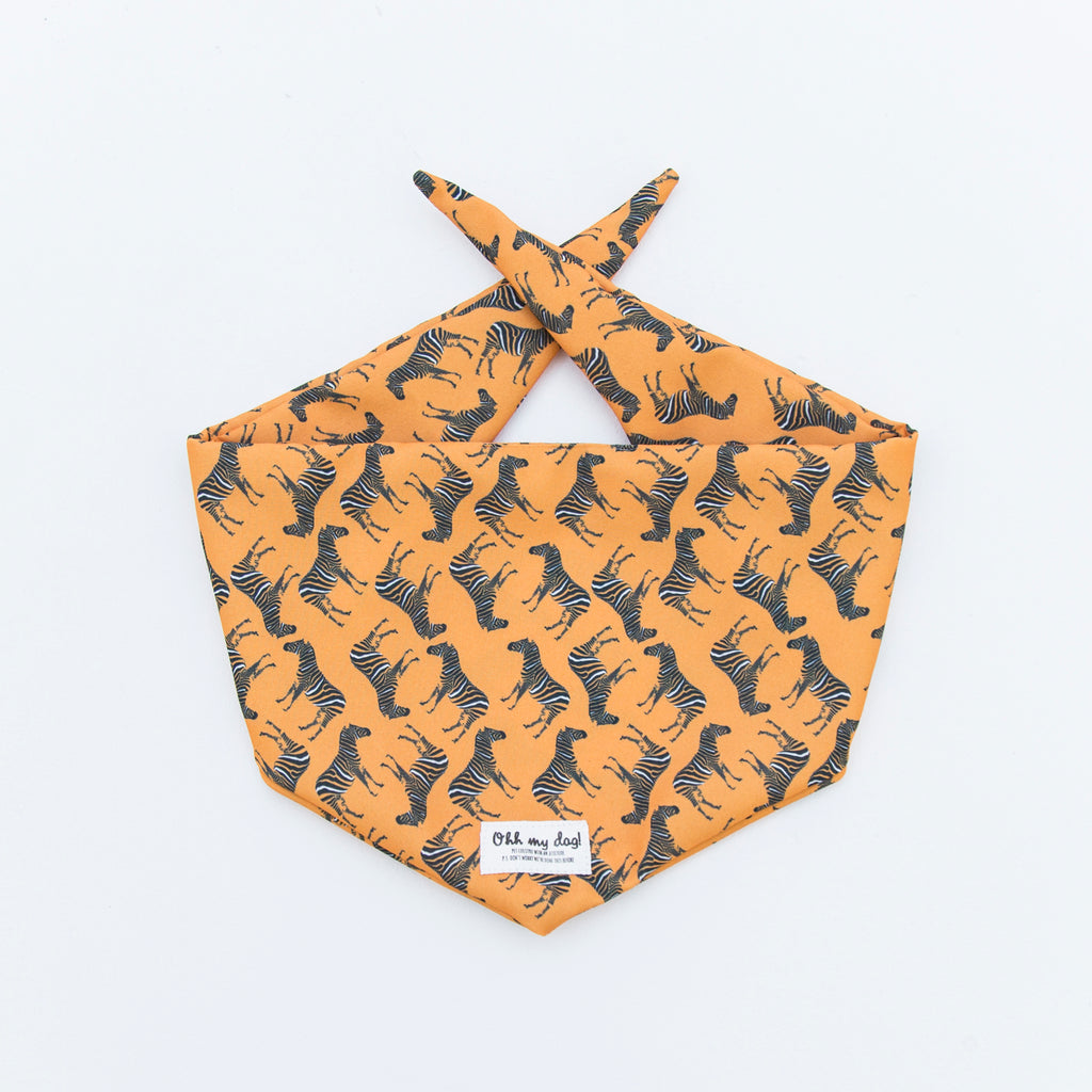PET BANDANA - ZEBRA - ORANGE