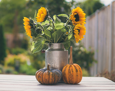 thanksgiving sunflower decor