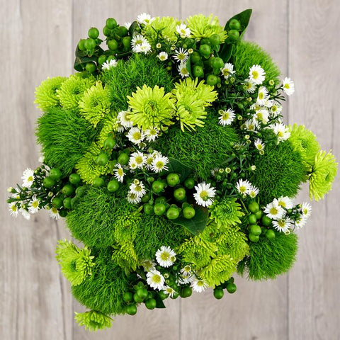 green trick dianthus, athos poms, and buttercup daisies zodiac flowers birth flowers