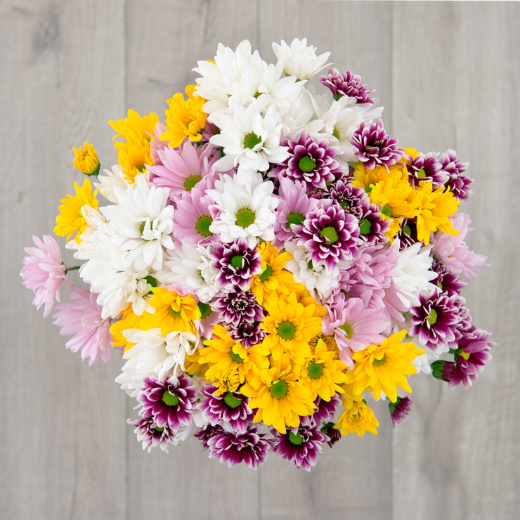 mixed-daisy-flower-bouquet