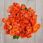 Orange Spray Roses