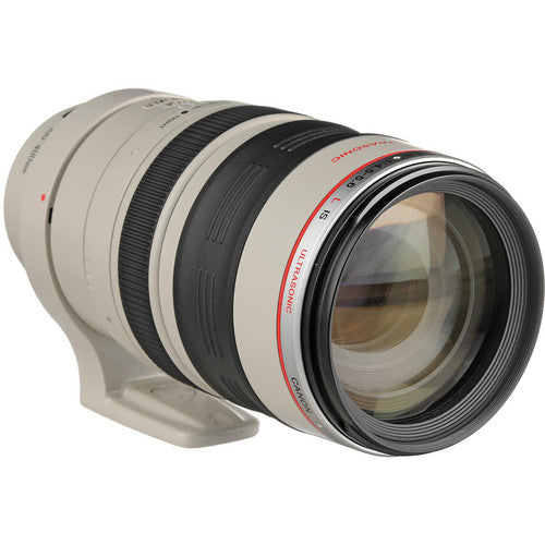 Canon EF 100-400mm F/4.5-5.6L IS USM Rental