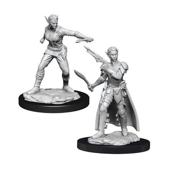 Dungeons & Dragons - Shifter Rogue Female