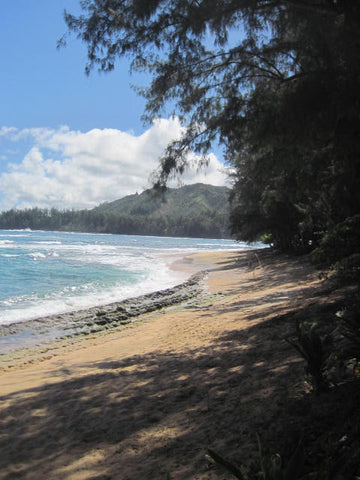 baby equipment rental & beach gear rentals kauai