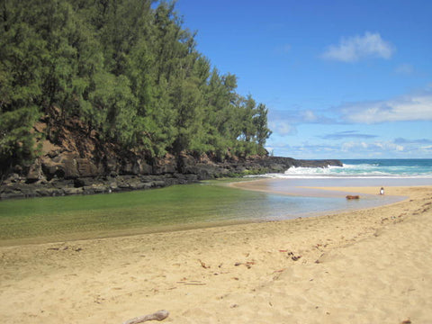 baby gear rentals & beach equipment rental Kauai