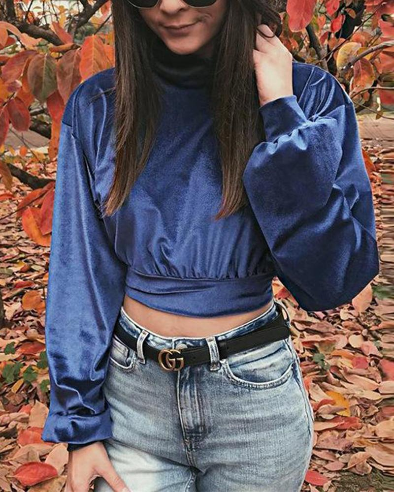 High Neck Velvet Cropped Sweatshirt