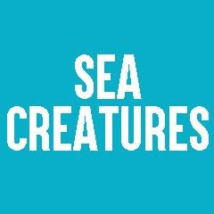 Sea Creatures Themed Jewelry and Products