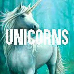 Unicorn Inspired Mythical Creatures Jewelry and Products