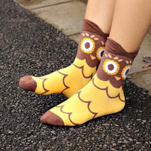 Barn Owl Bird Print Animal Themed Cotton Socks in Brown