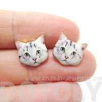 Adorable Grey Tabby Kitty Cat Face Shaped Stud Earrings