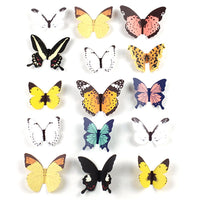 Colorful 3D Butterfly Shaped Paper Wall Art Decoration | DOTOLY