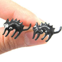 Petrified Scaredy Kitty Cat Animal Stud Earrings in Black | DOTOLY | DOTOLY