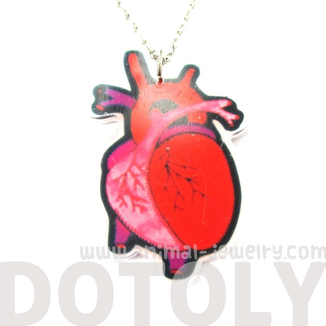 My Heart Belongs To You Human Heart Anatomy Shaped Necklace in Acrylic