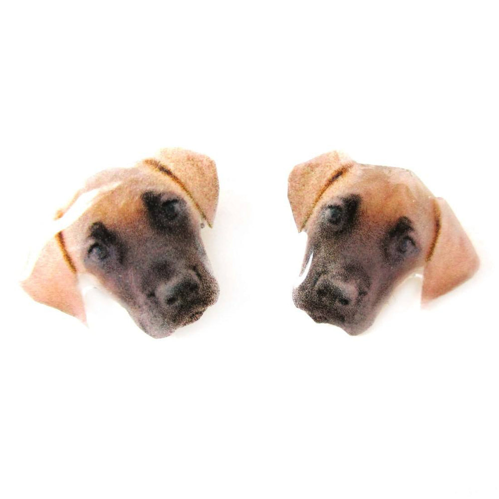 Realistic Great Dane Dog Face Shaped Animal Resin Stud Earrings